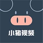 小猪视频芭蕉视频草莓视频app